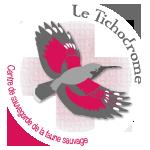 logo-tichodrome
