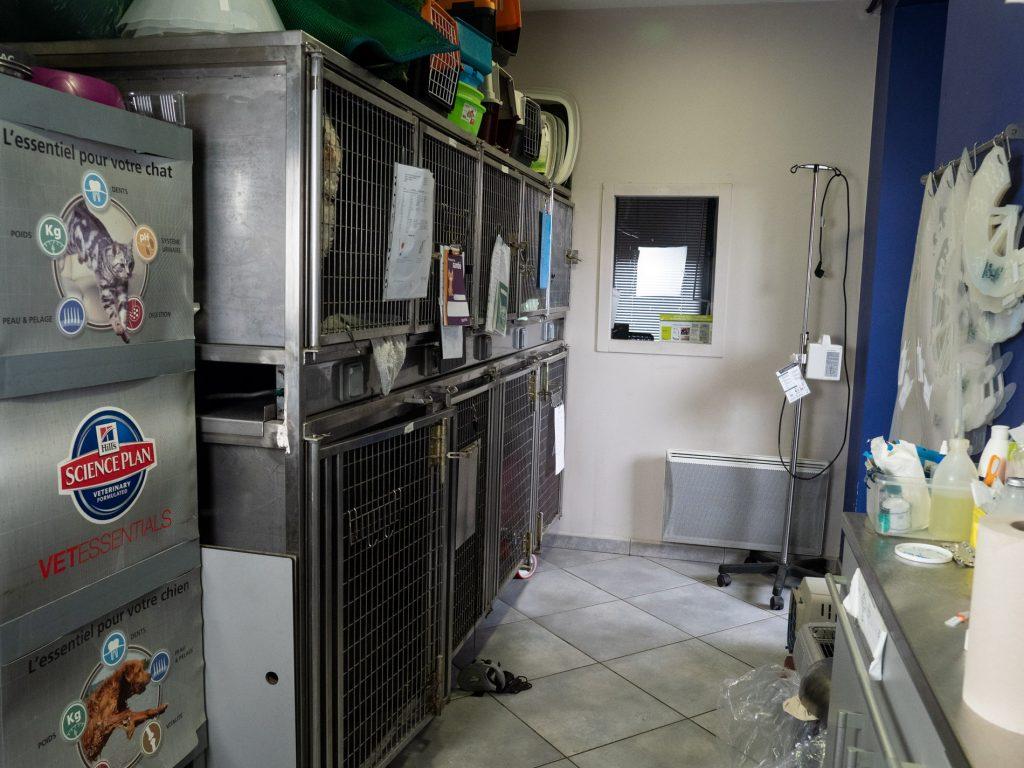 Cages post opératoire de  de la clinique vétérinaire de la Tivollière